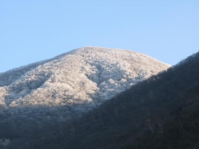 黒檜山(赤城山) パート2 _d0098922_133574.jpg
