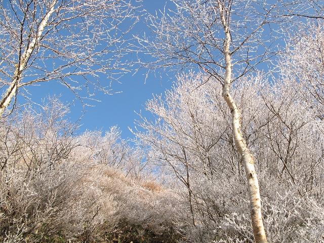 黒檜山(赤城山) パート2 _d0098922_1521167.jpg