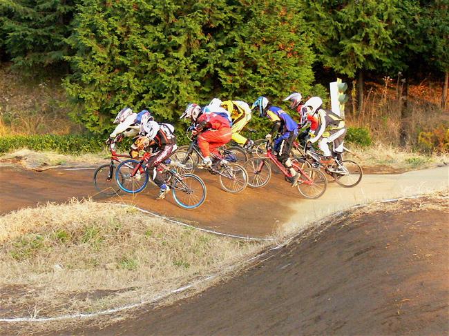 JOSF緑山2006ファイナルレース VOL 9 BMXジュニアクラスとミドルクラス準決勝〜決勝画像垂れ流し_b0065730_22163428.jpg