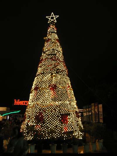 12月24日merry X\'mas_c0070933_22523035.jpg