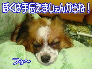 f0011845_072772.jpg