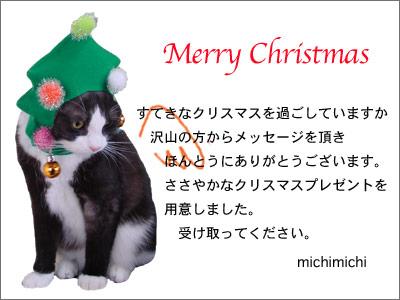 クリスマスプレゼント_a0064067_1622378.jpg