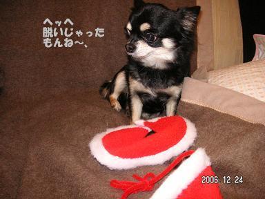 クリスマスイヴ_d0006467_19104063.jpg