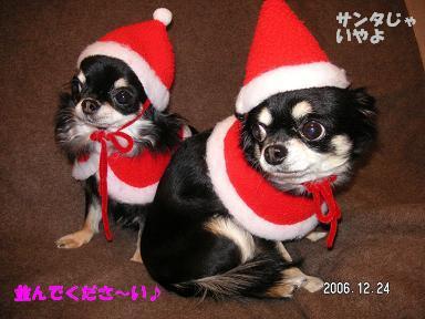 クリスマスイヴ_d0006467_1994197.jpg