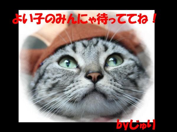 メリークリスマス☆_d0058182_15232132.jpg