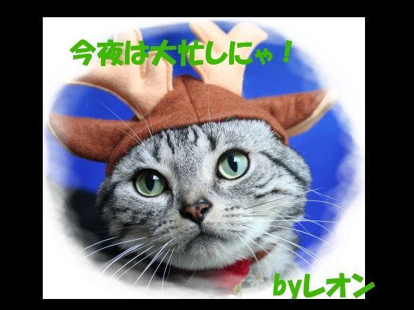 メリークリスマス☆_d0058182_1731497.jpg