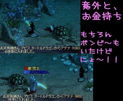 f0072010_875199.jpg