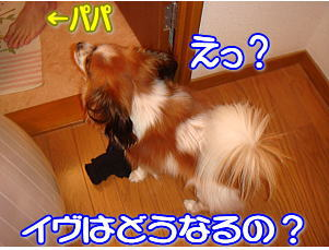 f0011845_0302271.jpg