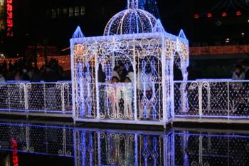 年賀状の写真は…!天神の警固公園♪クリスマス・イルミネーション♪_d0082356_6463223.jpg