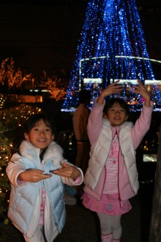 年賀状の写真は…!天神の警固公園♪クリスマス・イルミネーション♪_d0082356_64851100.jpg
