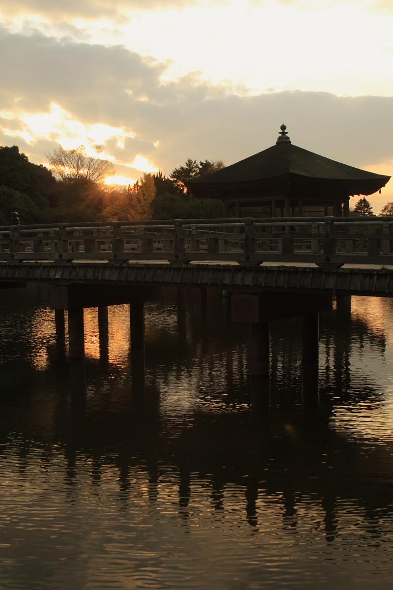 奈良公園 3_f0021869_12381394.jpg