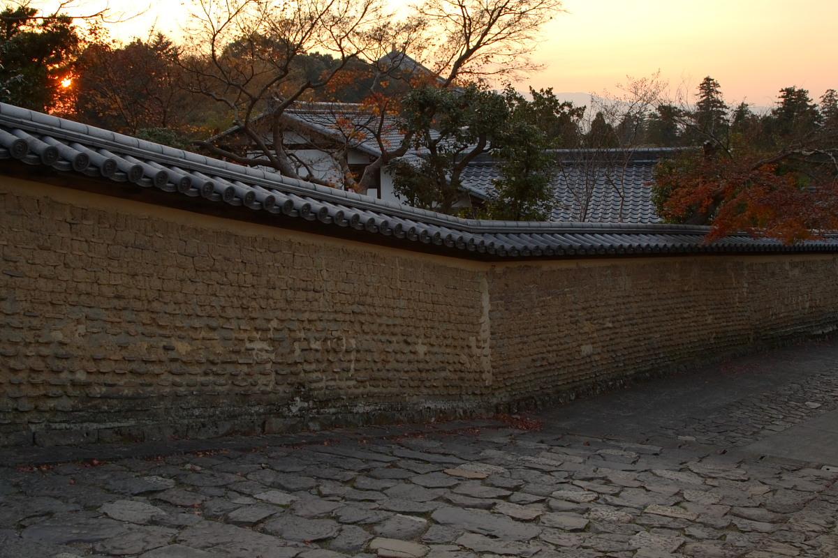 奈良公園 6_f0021869_1349998.jpg