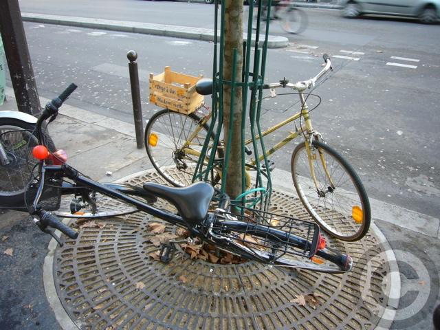 ■街角の自転車(PARIS)_a0008105_20282254.jpg