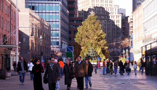 歌うクリスマス・ツリー ~ The Chorus Tree_b0007805_0274271.jpg
