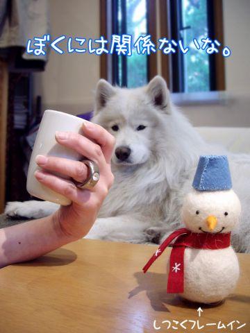 『東京ピカピカ案内』 おわり_c0062832_16323253.jpg