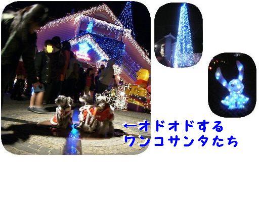 d0048951_1903961.jpg