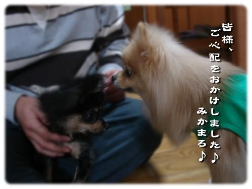 b0078073_22554672.jpg