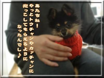 b0078073_2362056.jpg