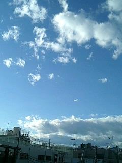 台風一過_f0064823_1521186.jpg
