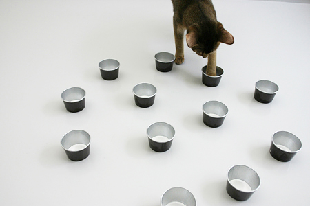 [猫的]履き心地_e0090124_8413356.jpg