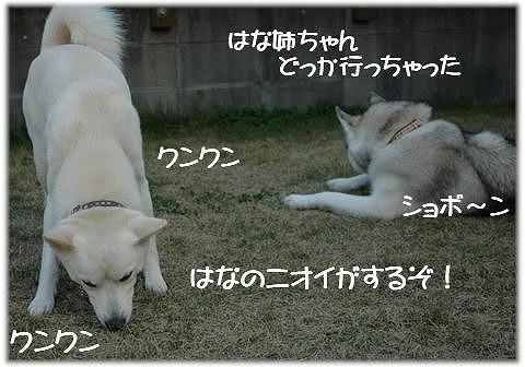a0047325_2445349.jpg