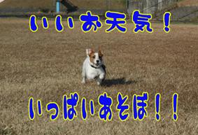 f0035044_13441357.jpg