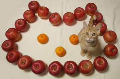りんご猫_a0064067_0181674.jpg
