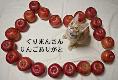 りんご猫_a0064067_0475156.jpg