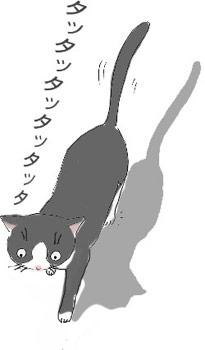 りんご猫_a0064067_11212086.jpg
