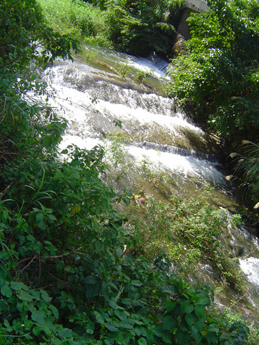 水は山おかげ_c0057821_22143549.jpg