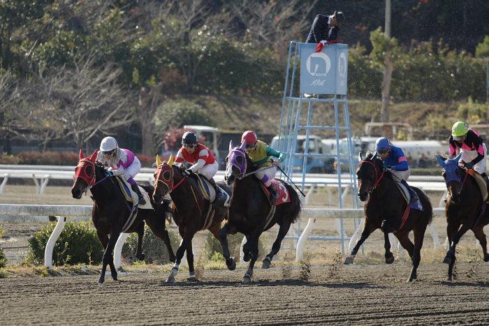 2006年12月17日(日) 高知競馬 2R 3R_a0077663_18183875.jpg