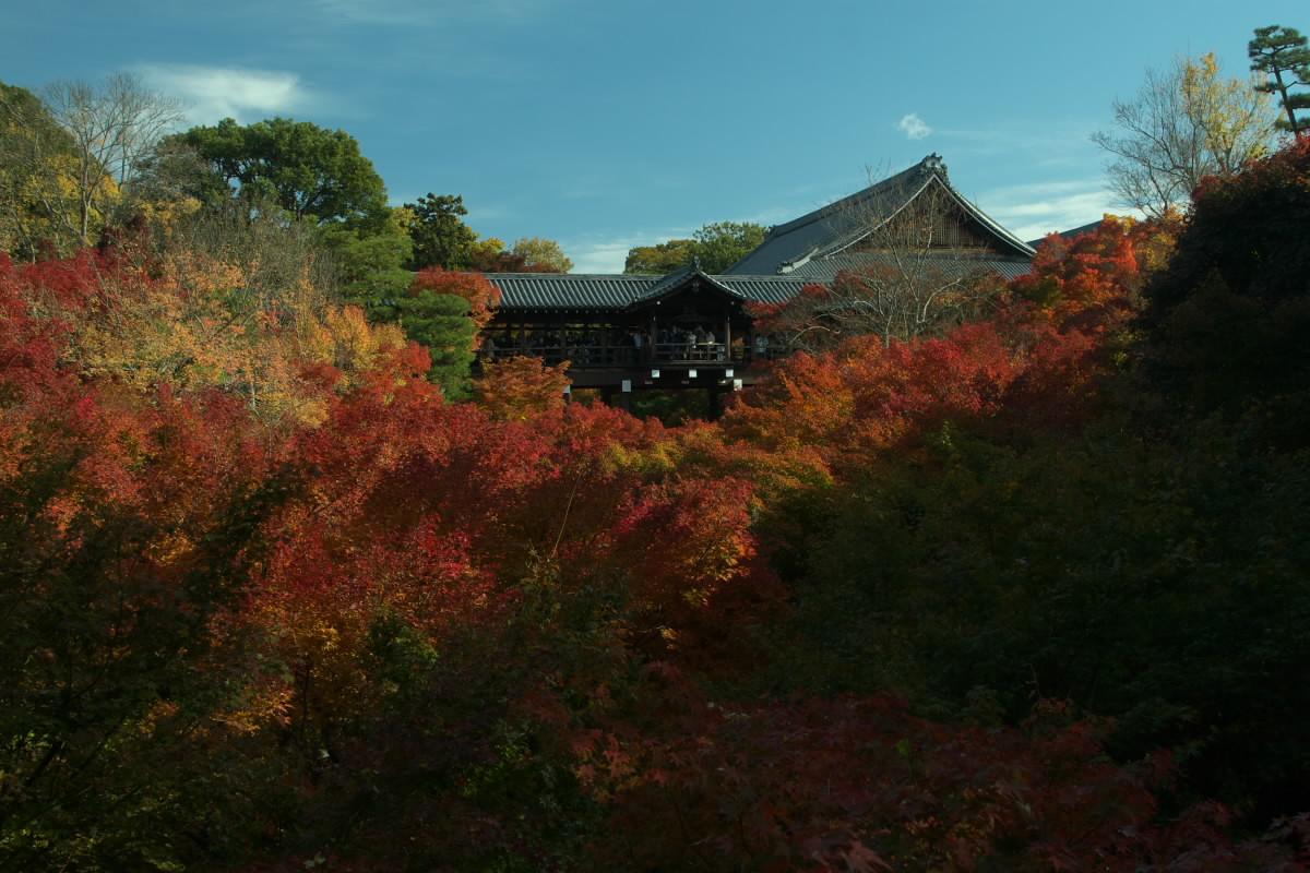 京都 東福寺<もろもろ復活編>_f0021869_0521153.jpg
