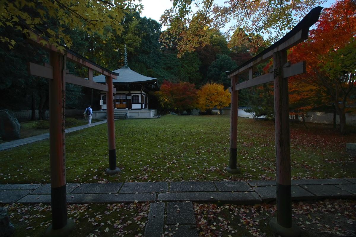 京都 東福寺<もろもろ復活編>_f0021869_0531953.jpg
