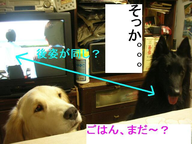 f0109202_063027.jpg