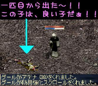 飛んだ先は・・・_f0072010_4403274.jpg