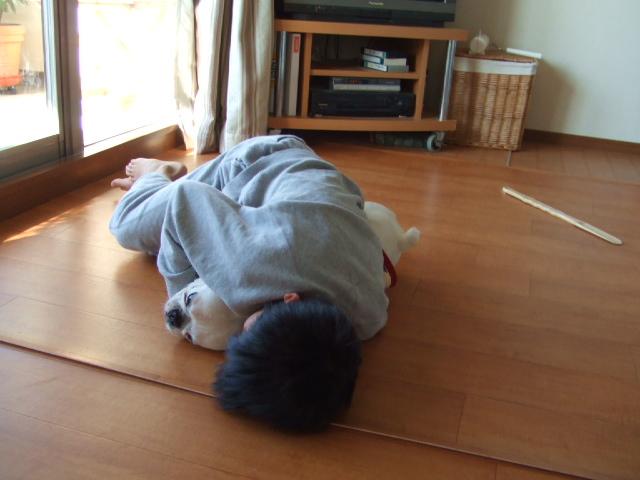 大掃除 2006年12月29日 金曜日_f0090117_2350411.jpg