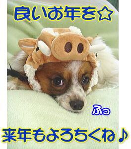 f0011845_1529231.jpg
