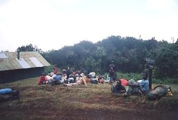 キリマンジャロ登頂記 (3) マンダラ・ハット (2,727m)_c0011649_8435824.jpg