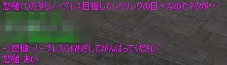 f0057350_3391644.jpg