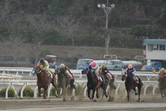 2006年12月24日(日) 高知競馬 9R 土佐三原どぶろく特別_a0077663_1644331.jpg