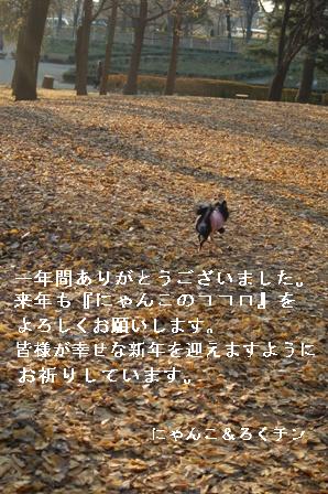 f0065768_18145220.jpg