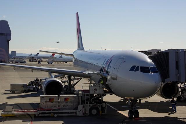 飛行機に乗って_f0001482_2036378.jpg