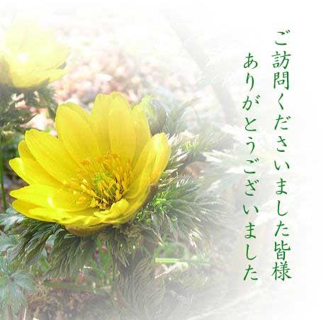 b0068793_1450014.jpg