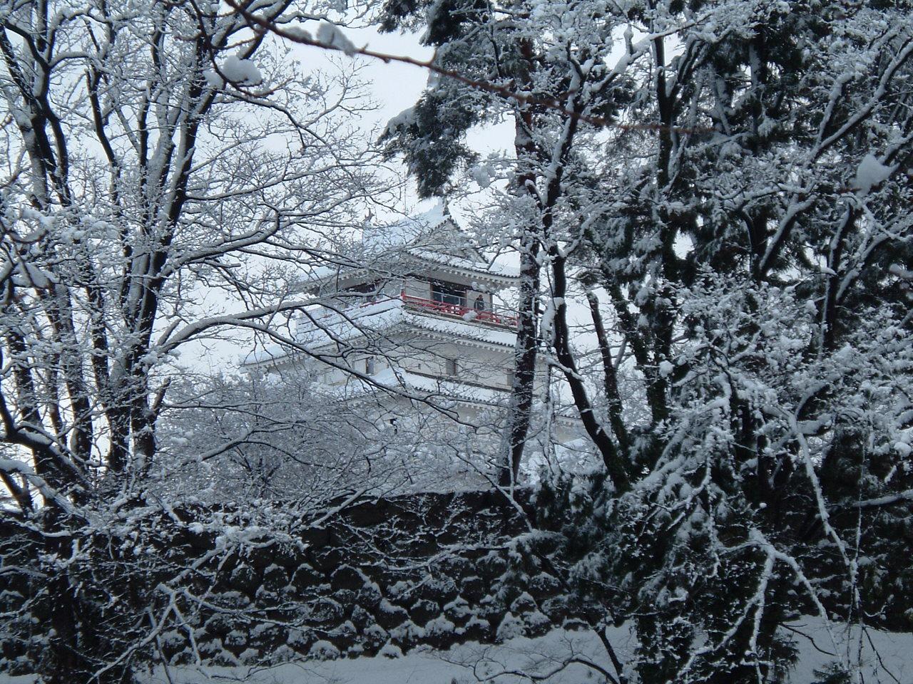 湿り雪_f0032130_17323341.jpg