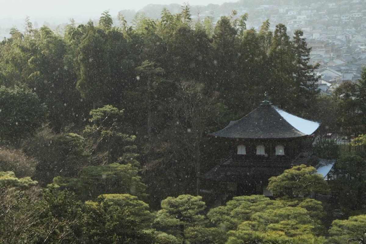 京都では_f0021869_1331065.jpg