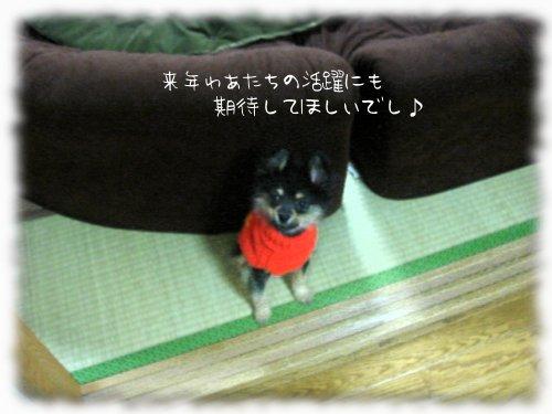 b0078073_0155332.jpg