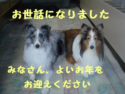 f0087779_20113521.jpg