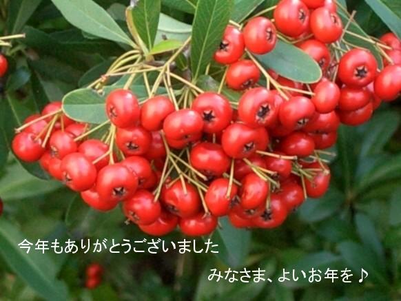f0108000_11592730.jpg