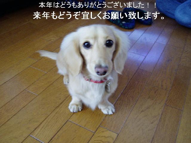 c0023804_1532502.jpg