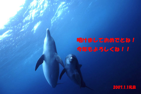 a0049406_23552911.jpg
